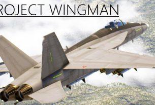 Обзор Project Wingman - аниме-авиасимулятор